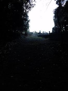 141103.jpg